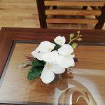 Décoration pour Professionnel Orchidées